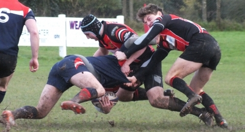 Wellington RFC banner image 4