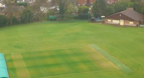 Whitstable Cricket Club banner image 2