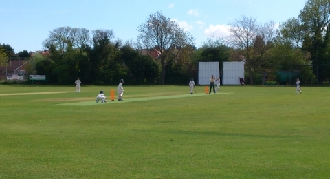 Whitstable Cricket Club banner image 5