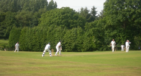 Ash Tree Cricket Club banner image 7