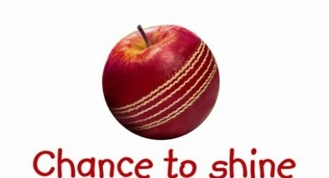 Bradford & Bingley Cricket Club banner image 5