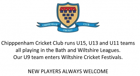 Chippenham Cricket Club banner image 2