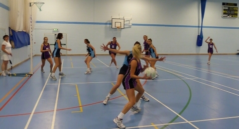 Thoroughbreds Netball Club banner image 5