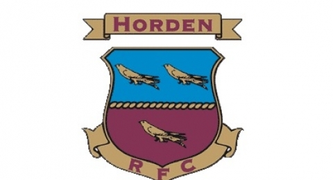 Horden Welfare Rugby Club banner image 8