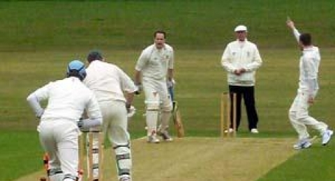 HAVERFORDWEST CRICKET banner image 1
