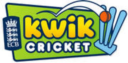 Image result for kwik cricket