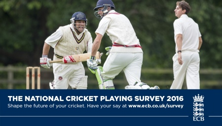 2016 ECB Cricket Survey
