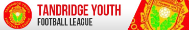 Tandridge Youth Football League