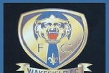 Wakefield Merger
