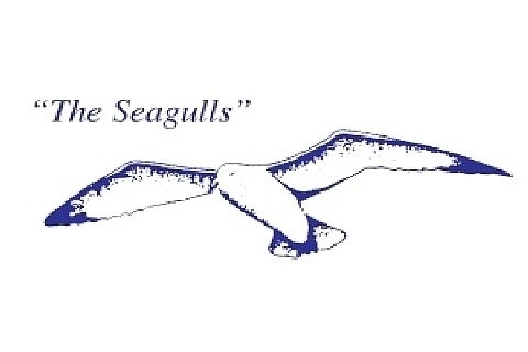 Cruel on Seagulls