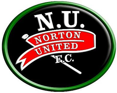 Norton Gain Promotion