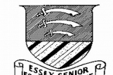 Essex Senior League Ups and Downs