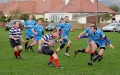 Wigtownshire 1st XV v Strathendrick 1st XV still