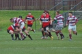 Watsonians still