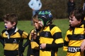 U9's Tigers Kent Prelims at Cranbrook RFC