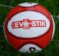 Evo-Stik NPL News image