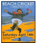 BEACH CRICKET TRIP - NEW DETAILS image