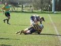 2nds Vs Hinckley (Home 20-4-2013)