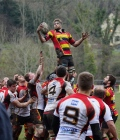 Quins prove bridge too far