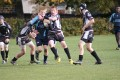 u16 v castleford panthers still