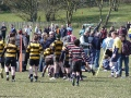 beccehamians festival 070413
