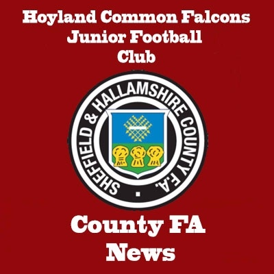 Information Hoyland Common Falcons Jfc