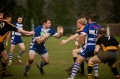 Stroud 1st XV vs Tewkesbury  still