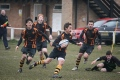 ELY U16S V NEWMARKET still