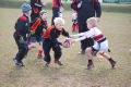 Rhinos U7s Vs Bromsgrove April 2013