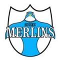 Merlins Associated Clubs - Merlins
