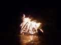 Bonfire 2012 still