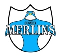 SUSSEX MERLINS RUGBY LEAGUE FESTIVAL image