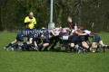 Quins Ams U16 move 5 points clear