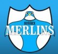 Merlins win season opener!