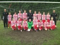Stourbridge juniors under 13sb gain automatic promotion to division 1