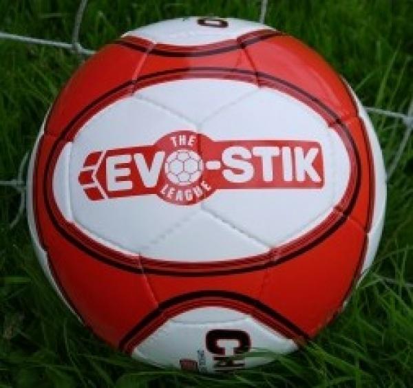 Evo-Stik ball