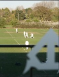 Cricket at Farnham still
