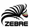 "Italian Rugby Federation announced today ""Zebre"" (Zebras) as the new team to replace Aironi image"