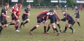 Linlithgow RFC 24 - 26 Preston Lodge image