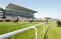 Club Day & Race Night Tickets (8th Sep) now available! image