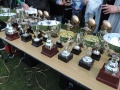 Trophy offer for Chess Valley members