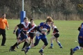 Gateshead Storm Travell To Durham Demons In Semi Final image