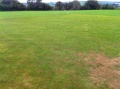 Calstock Ground Renovation 2012 still