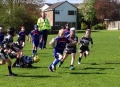 Under 8's prove to be the stronger side