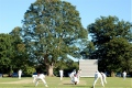 Knebworth Park Cricket Club Images still