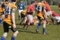 1st XV v Bangor 1st XV April 2013 - Credit to B.G. Images 'Bill Guiller' still