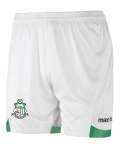 Macron MESA short Green