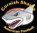INTERESTED IN SHARKS FOOTBALL? image