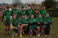 Devon 7s Cup Runners Up