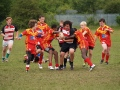Warriors U14s v Dragons still